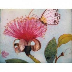 """Jutta Votteler """"Naschender Schmetterling"""" Bilder im Original kaufen."""