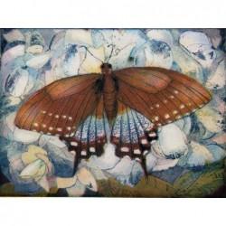 """Jutta Votteler """"Schmetterlingsparadies"""" Bilder im Original kaufen."""