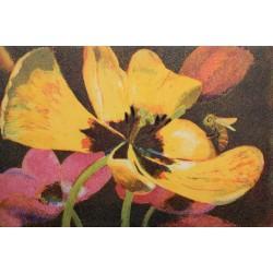 """Jutta Votteler """"Leuchtende Tulpen"""" Bilder im Original kaufen."""